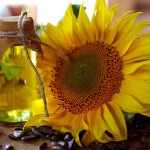 sunflower-oil-for-natural-skin-care-thousand-oaks